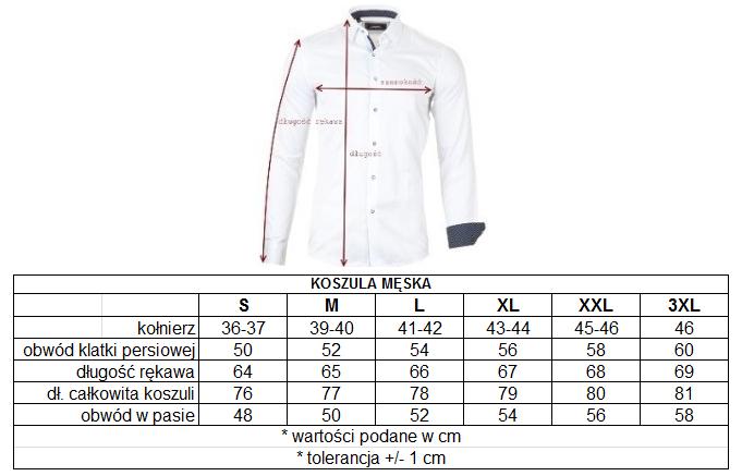 Koszula męska KS1825 1 Repablo  UMe9g